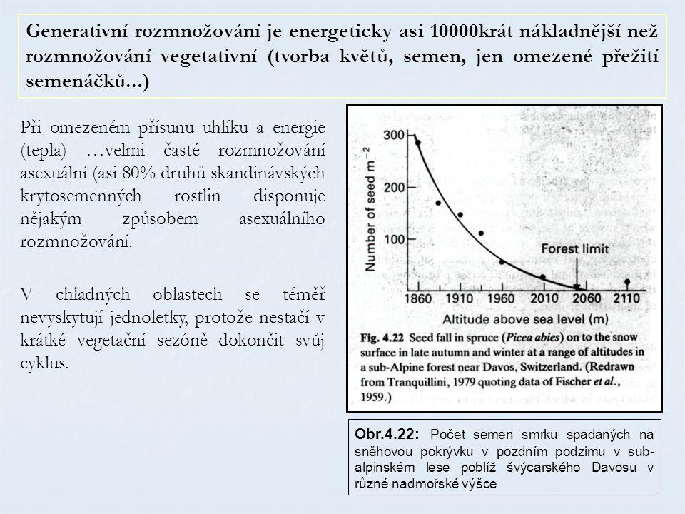 Při omezeném přísunu uhlíku a energie (tepla) …velmi časté rozmnožování asexuální (asi 80% druhů skandinávských krytosemenných rostlin disponuje nějak