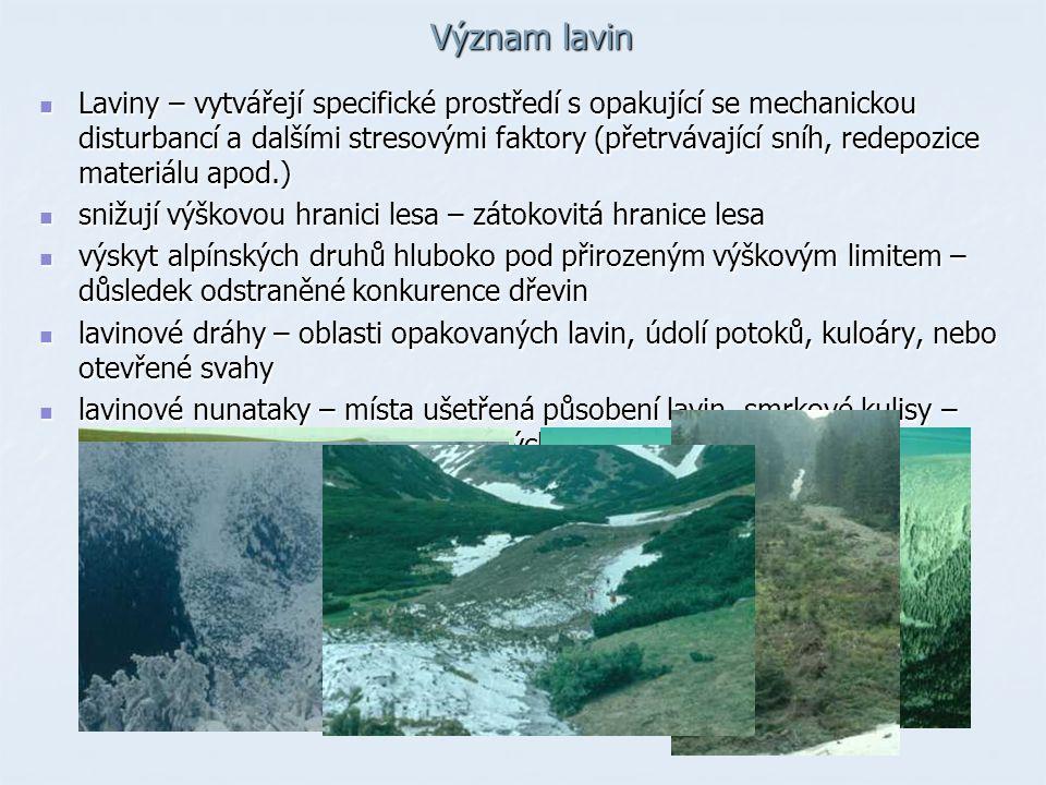 Význam lavin Laviny – vytvářejí specifické prostředí s opakující se mechanickou disturbancí a dalšími stresovými faktory (přetrvávající sníh, redepozi