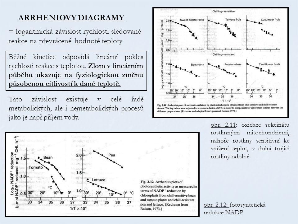 = logaritmická závislost rychlosti sledované reakce na převrácené hodnotě teploty Tato závislost existuje v celé řadě metabolických, ale i nemetabolic