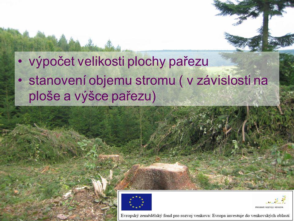 výpočet velikosti plochy pařezu stanovení objemu stromu ( v závislosti na ploše a výšce pařezu)