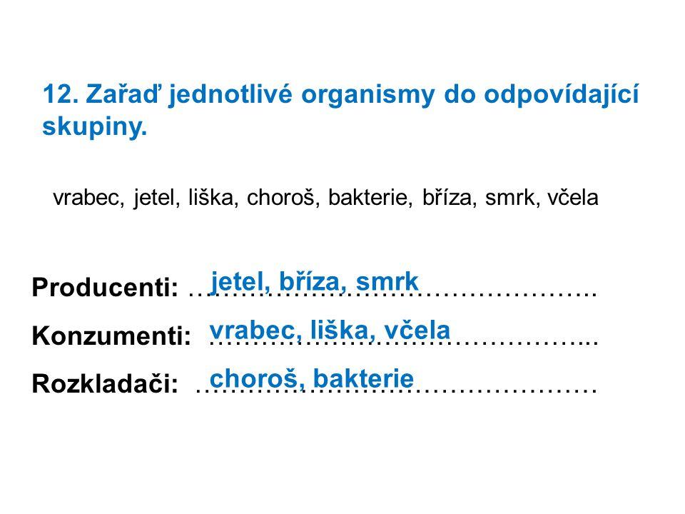 12.Zařaď jednotlivé organismy do odpovídající skupiny.