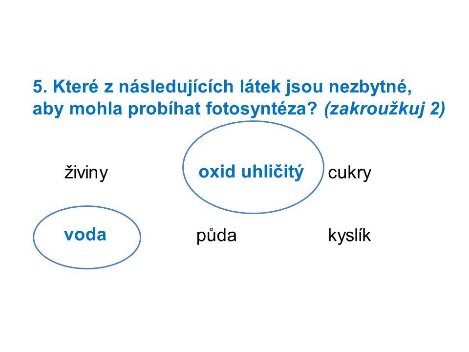 6.Doplň pojmy: Při fotosyntéze vznikají 2 látky.