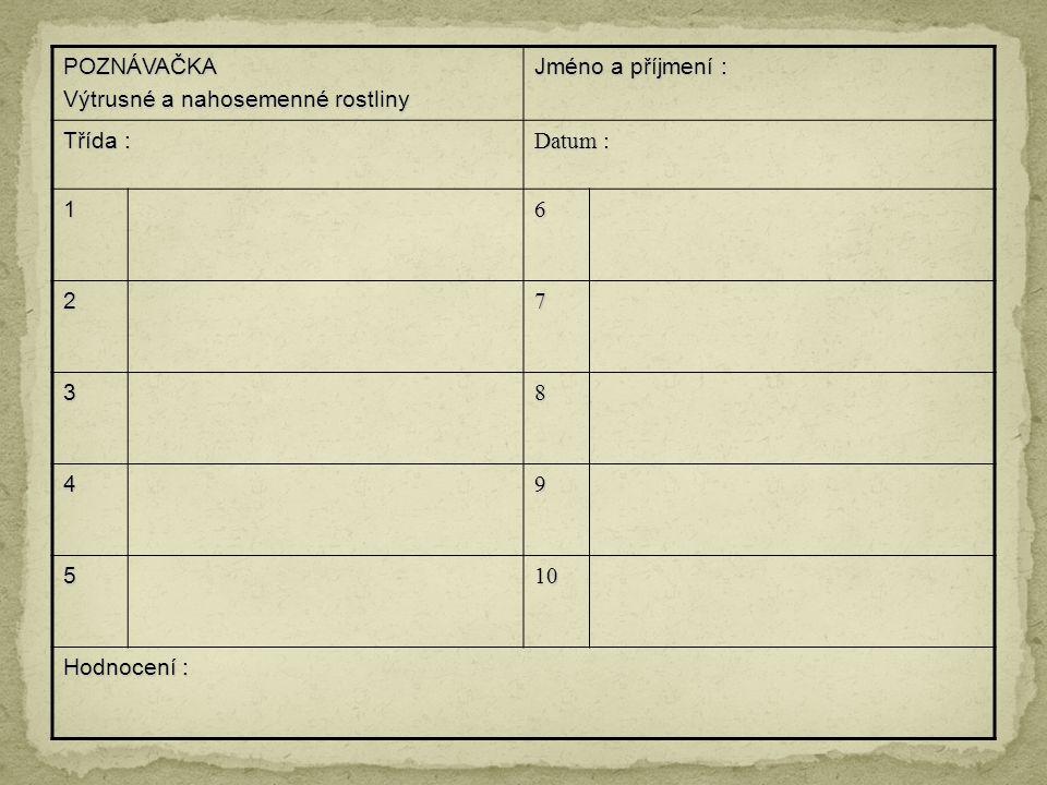 POZNÁVAČKA Výtrusné a nahosemenné rostliny Jméno a příjmení : Třída : Datum : 16 27 38 49 5 10101010 Hodnocení :