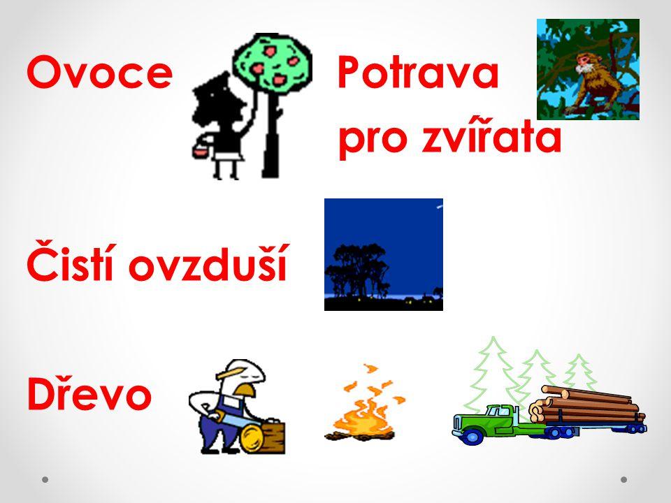 Ovoce Potrava pro zvířata Čistí ovzduší Dřevo