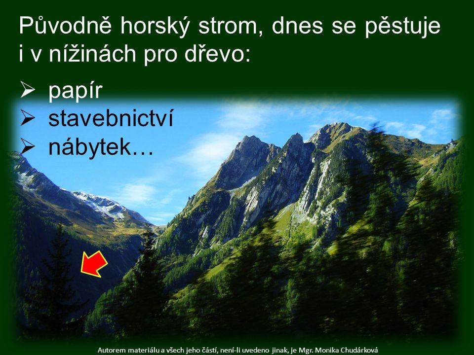 Autorem materiálu a všech jeho částí, není-li uvedeno jinak, je Mgr. Monika Chudárková Původně horský strom, dnes se pěstuje i v nížinách pro dřevo: 