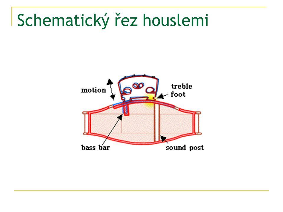 Schematický řez houslemi