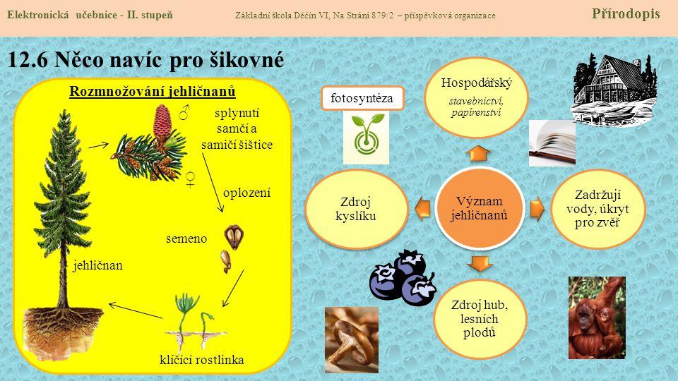 12.7 CLIL Elektronická učebnice - II.