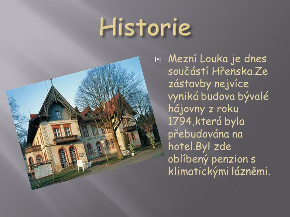  Mezní Louka je dnes součástí Hřenska.Ze zástavby nejvíce vyniká budova bývalé hájovny z roku 1794,která byla přebudována na hotel.Byl zde oblíbený penzion s klimatickými lázněmi.