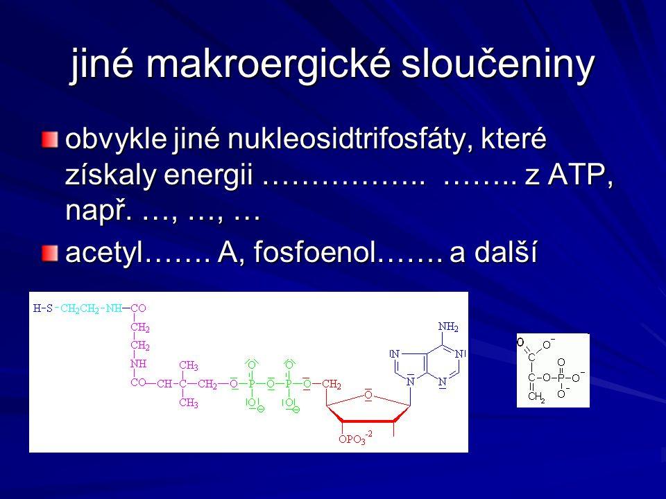 jiné makroergické sloučeniny obvykle jiné nukleosidtrifosfáty, které získaly energii …………….. …….. z ATP, např. …, …, … acetyl……. A, fosfoenol……. a dal