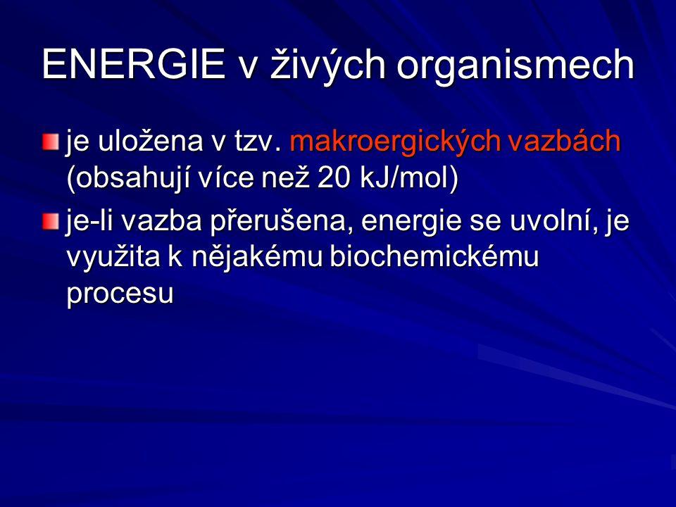 ENERGIE v živých organismech je uložena v tzv. makroergických vazbách (obsahují více než 20 kJ/mol) je-li vazba přerušena, energie se uvolní, je využi
