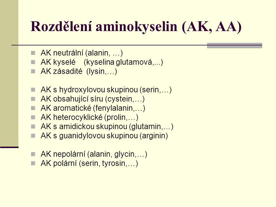 Rozdělení aminokyselin (AK, AA) AK neutrální (alanin, …) AK kyselé (kyselina glutamová,...) AK zásadité (lysin,…) AK s hydroxylovou skupinou (serin,…) AK obsahující síru (cystein,…) AK aromatické (fenylalanin,…) AK heterocyklické (prolin,…) AK s amidickou skupinou (glutamin,…) AK s guanidylovou skupinou (arginin) AK nepolární (alanin, glycin,…) AK polární (serin, tyrosin,…)