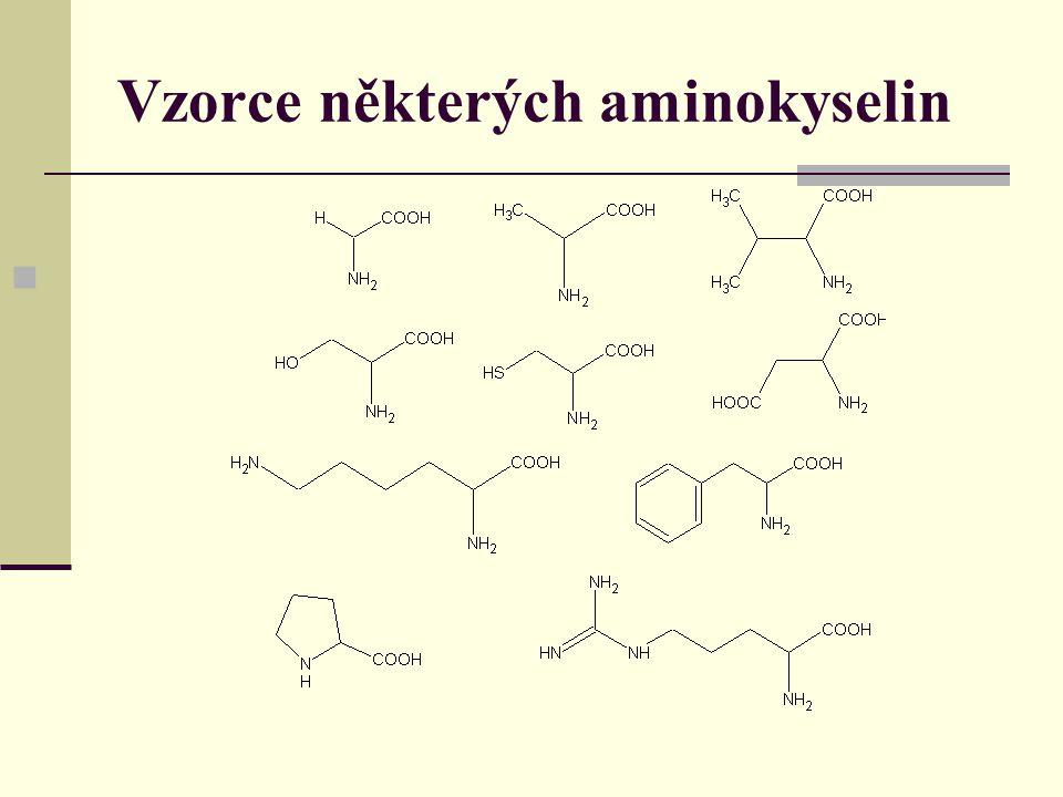 Vzorce některých aminokyselin