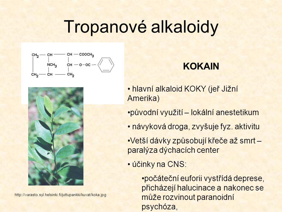 Tropanové alkaloidy http://varasto.syl.helsinki.fi/juttupankki/kuvat/koka.jpg KOKAIN hlavní alkaloid KOKY (jeř Jižní Amerika) původní využití – lokáln
