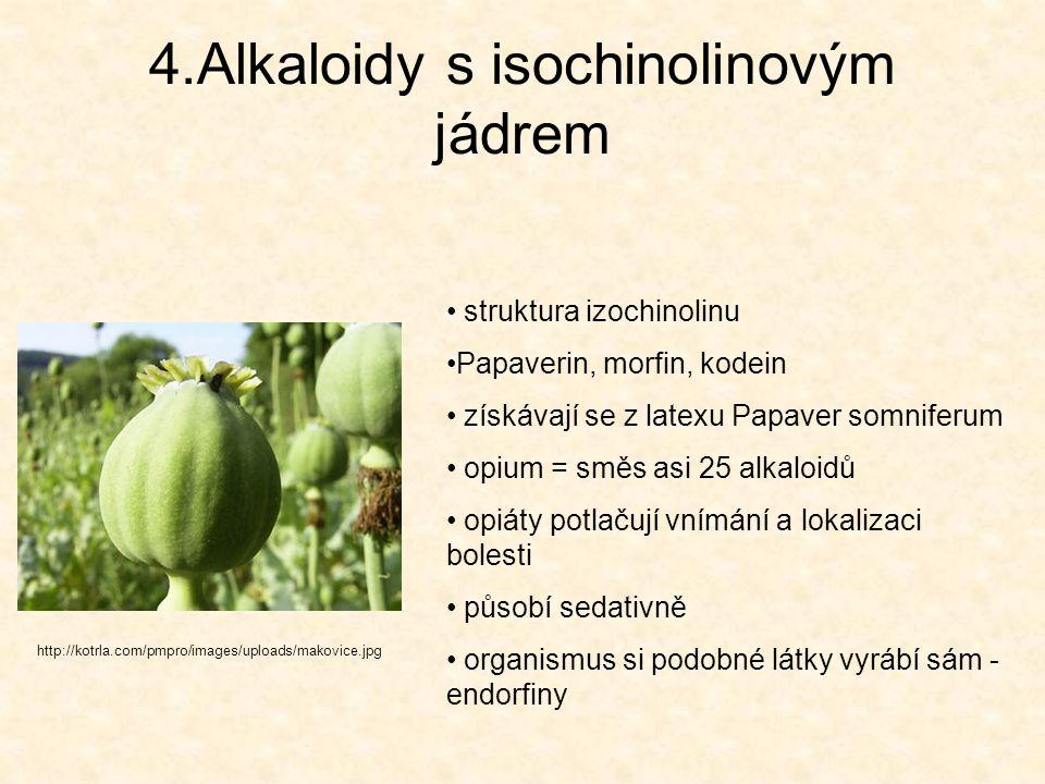 4.Alkaloidy s isochinolinovým jádrem http://kotrla.com/pmpro/images/uploads/makovice.jpg struktura izochinolinu Papaverin, morfin, kodein získávají se
