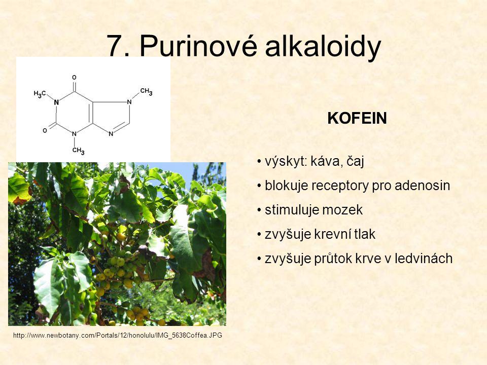 7. Purinové alkaloidy http://www.newbotany.com/Portals/12/honolulu/IMG_5638Coffea.JPG KOFEIN výskyt: káva, čaj blokuje receptory pro adenosin stimuluj
