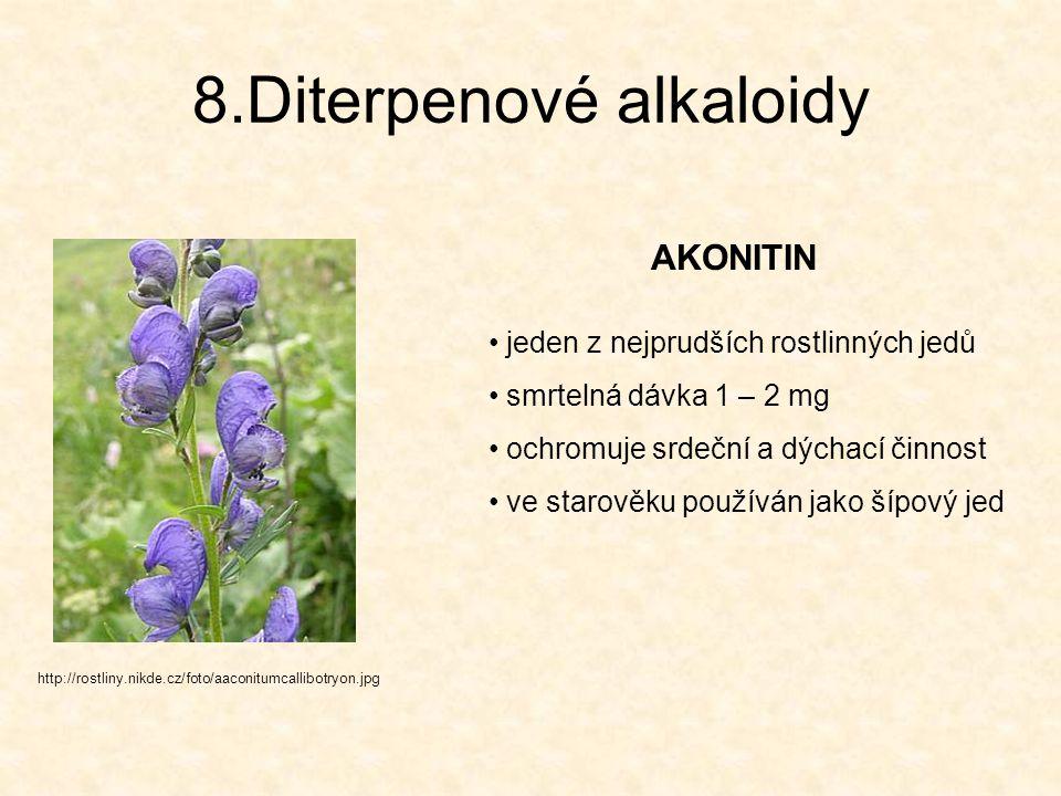 8.Diterpenové alkaloidy AKONITIN http://rostliny.nikde.cz/foto/aaconitumcallibotryon.jpg jeden z nejprudších rostlinných jedů smrtelná dávka 1 – 2 mg