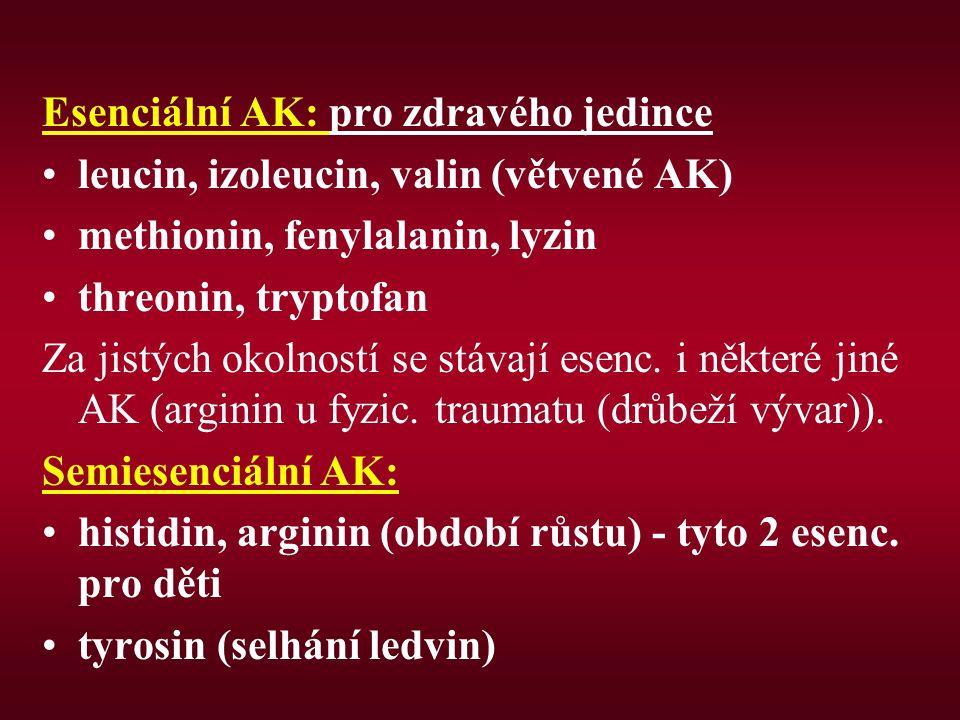 Esenciální AK: pro zdravého jedince leucin, izoleucin, valin (větvené AK) methionin, fenylalanin, lyzin threonin, tryptofan Za jistých okolností se st