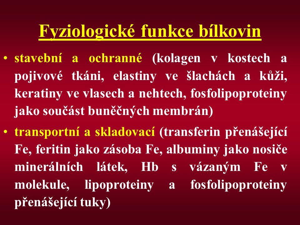KETOPLASTICKÉ AK (vznikají mastné kyseliny) esenciální: leucin, lysin