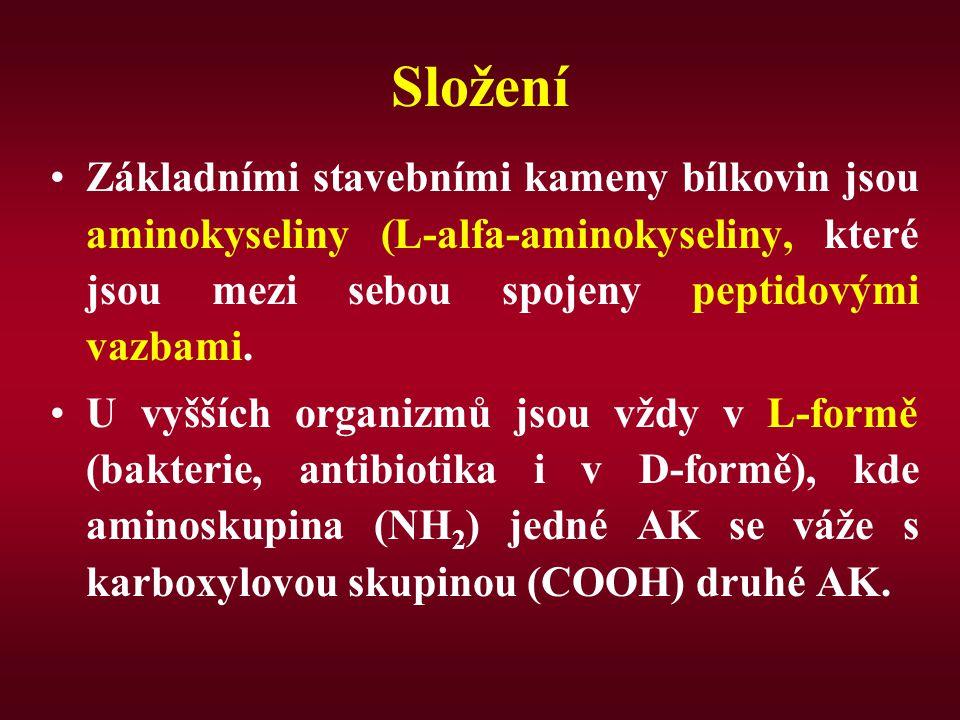 Histidin Zdroj: maso, mléko nezbytný pro růst a obnovu tkání.