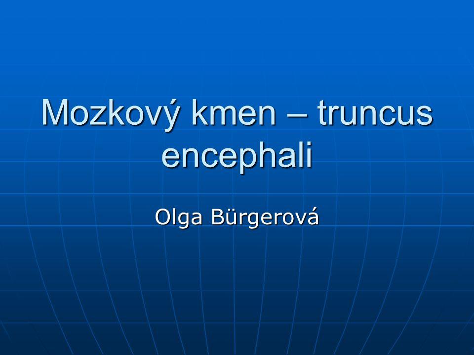 Mozkový kmen – truncus encephali Olga Bürgerová