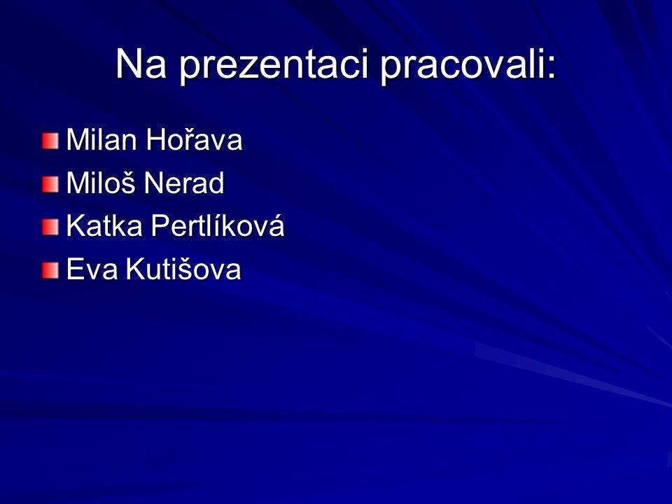 Na prezentaci pracovali: Milan Hořava Miloš Nerad Katka Pertlíková Eva Kutišova