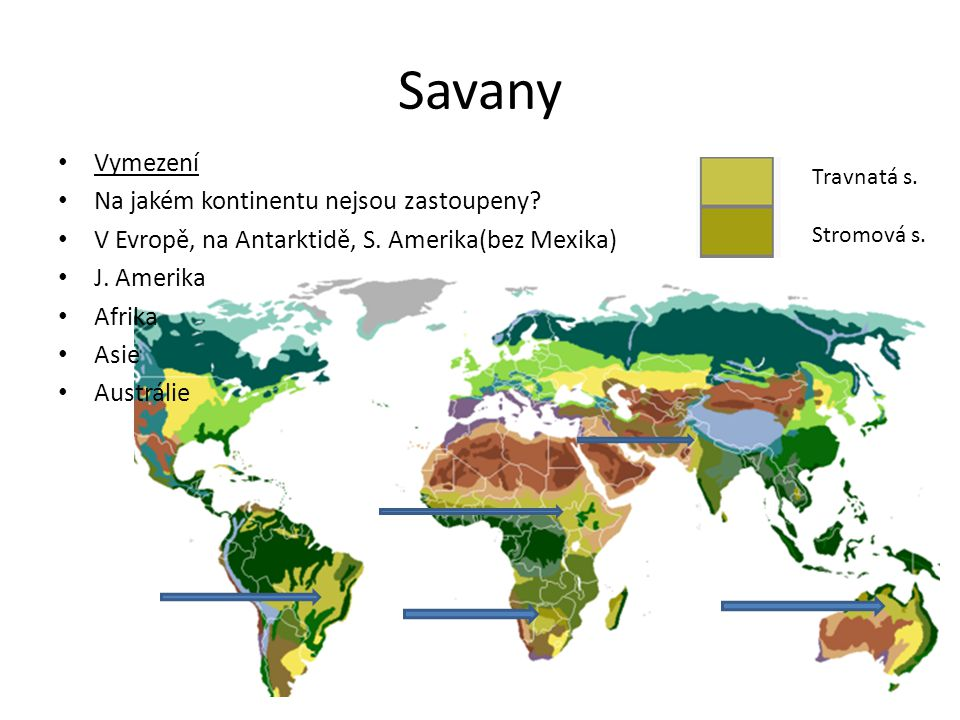Savany Vymezení Na jakém kontinentu nejsou zastoupeny? V Evropě, na Antarktidě, S. Amerika(bez Mexika) J. Amerika Afrika Asie Austrálie Travnatá s. St