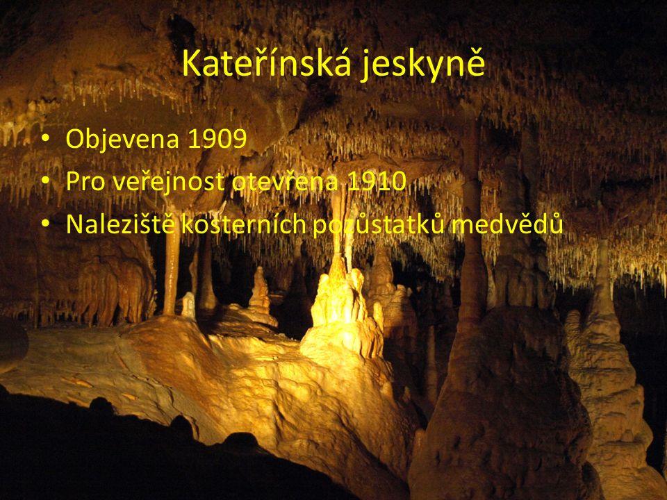 Kateřínská jeskyně Objevena 1909 Pro veřejnost otevřena 1910 Naleziště kosterních pozůstatků medvědů