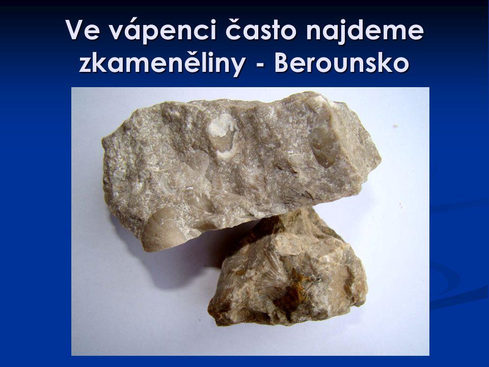 Ve vápenci často najdeme zkameněliny - Berounsko