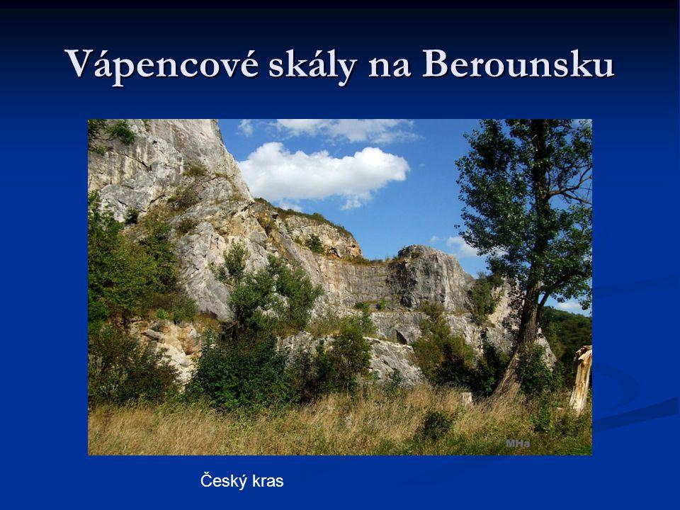 Vápencové skály na Berounsku Český kras