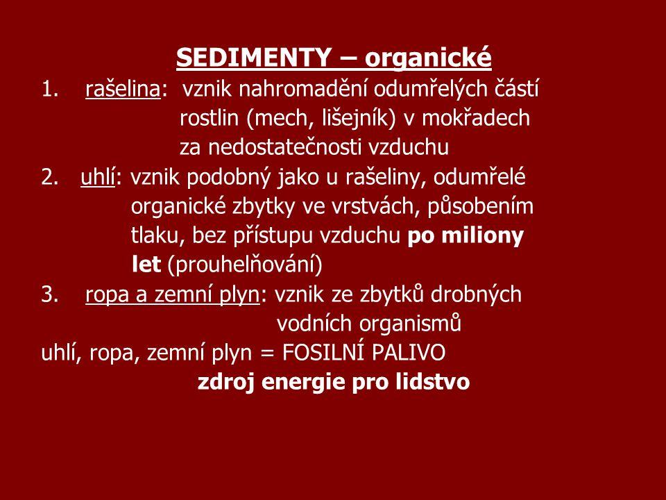 SEDIMENTY – organické 1.rašelina: vznik nahromadění odumřelých částí rostlin (mech, lišejník) v mokřadech za nedostatečnosti vzduchu 2. uhlí: vznik po