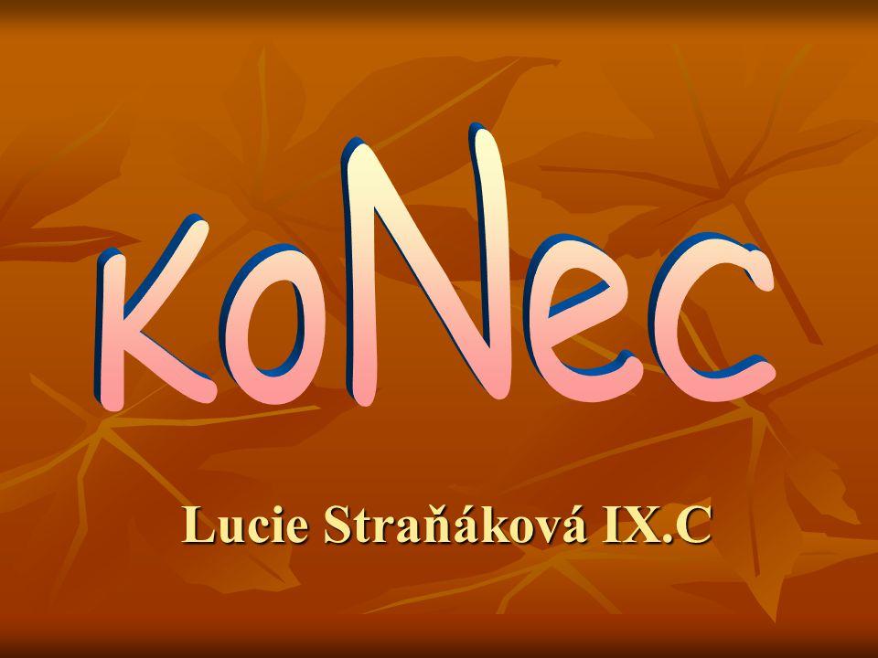 Lucie Straňáková IX.C