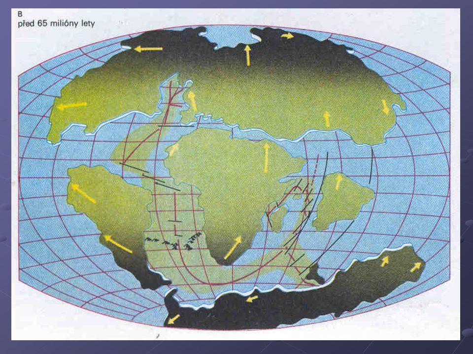 Stav za 50 milionů let