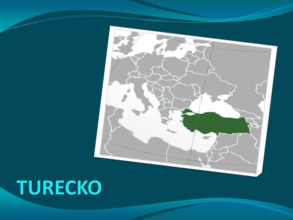 Různorodý region z hlediska: národnostního jazykového náboženského míry urbanizace státního uspořádání Po rozpadu Osmanské říše pod nadvládou Evropských mocností: Francie – Maroko, Tunisko, Alžírsko, Sýrie, Libanon Španělsko – část Maroka VB – Egypt, Palestina Itálie - Libye