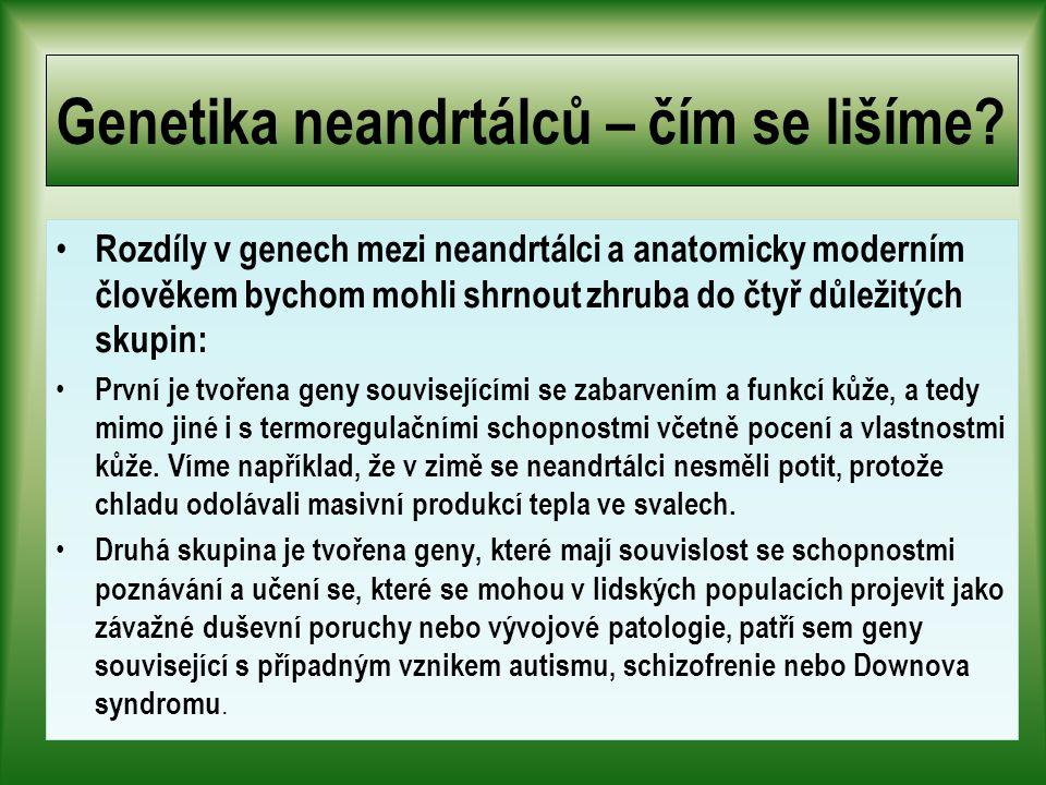 Genetika neandrtálců – čím se lišíme.