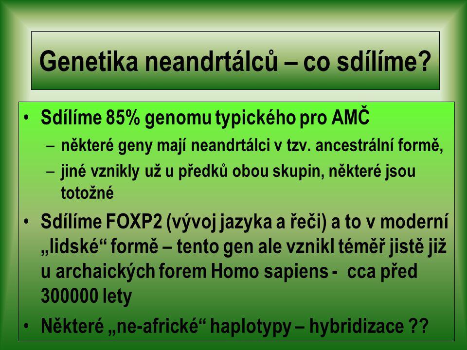 Genetika neandrtálců – co sdílíme.