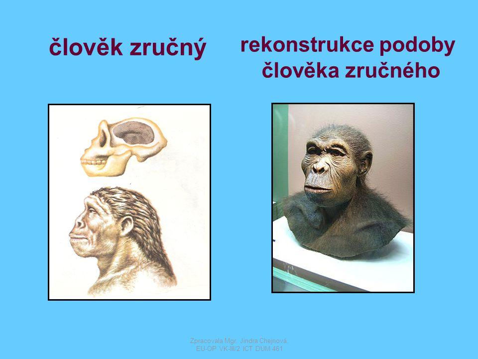člověk vzpřímený rekonstrukce podoby člověka vzpřímeného Zpracovala Mgr.