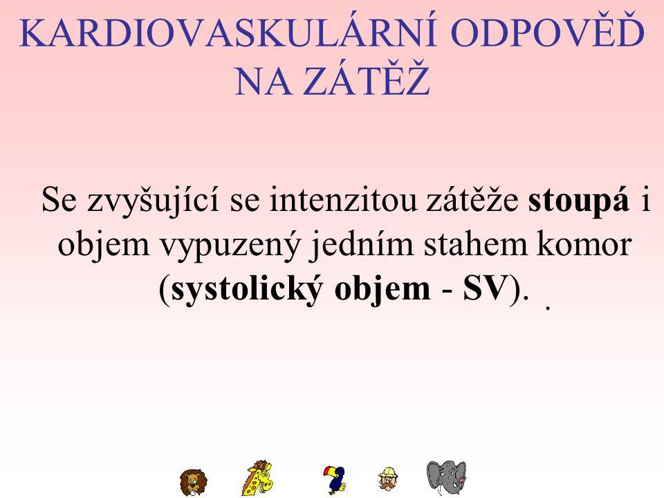 KARDIOVASKULÁRNÍ ODPOVĚĎ NA ZÁTĚŽ Se zvyšující se intenzitou zátěže stoupá i objem vypuzený jedním stahem komor (systolický objem - SV)..