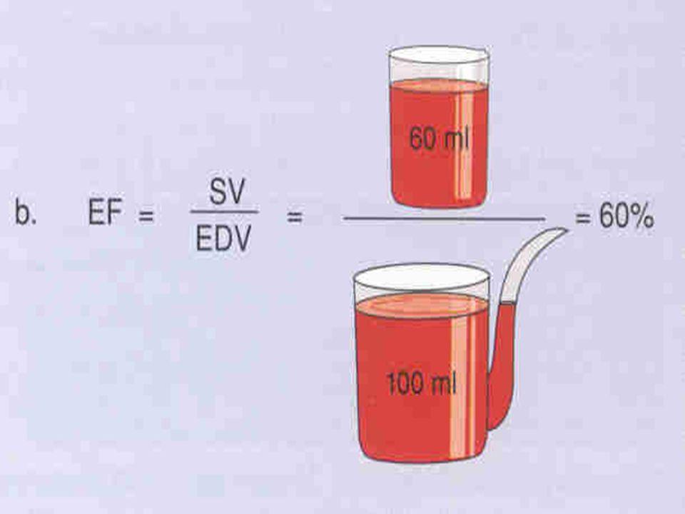 KARDIOVASKULÁRNÍ ODPOVĚĎ NA ZÁTĚŽ Při zátěži stoupá a-v diference kyslíku - koncentrace kyslíku v žilní krvi klesá - důsledek zvýšeného využití kyslíku aktivními tkáněmi..
