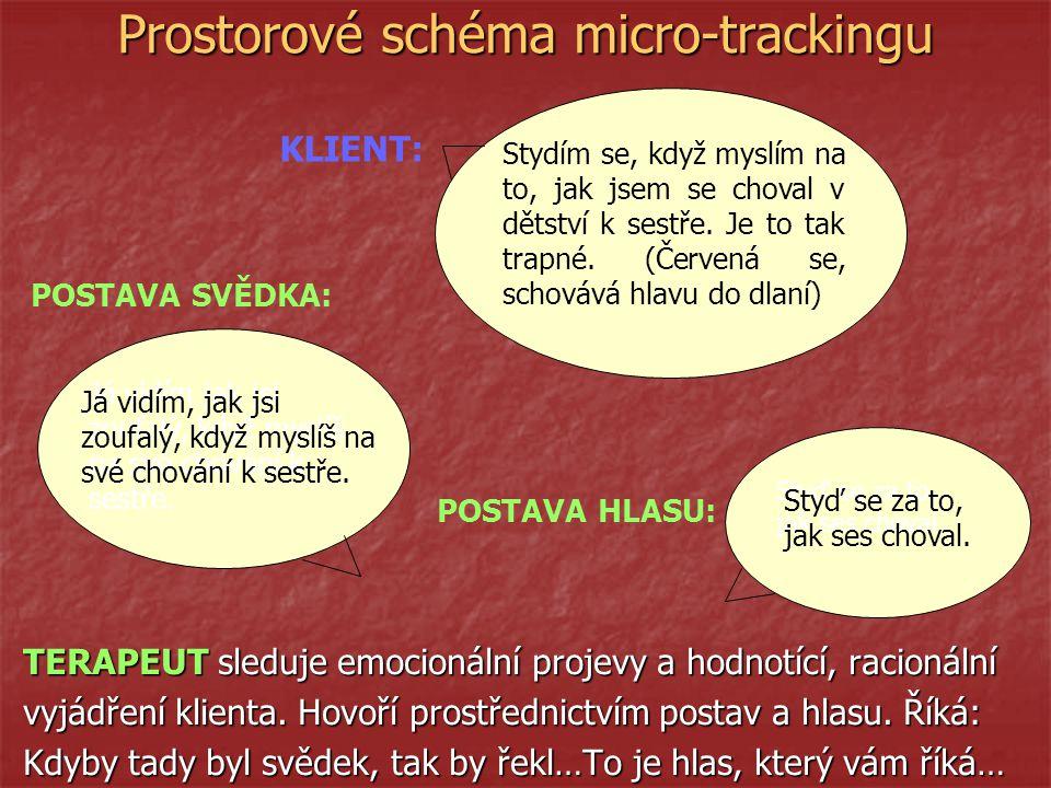 Prostorové schéma micro-trackingu TERAPEUT sleduje emocionální projevy a hodnotící, racionální vyjádření klienta.