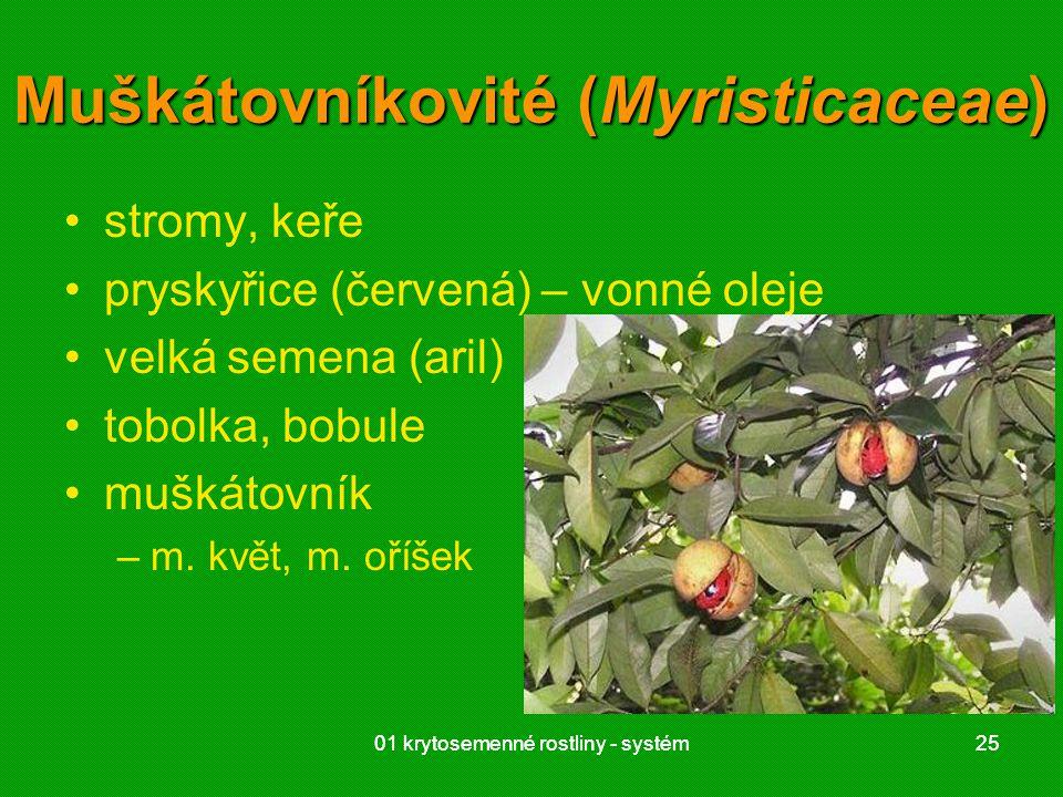 01 krytosemenné rostliny - systém2501 krytosemenné rostliny - systém25 Muškátovníkovité (Myristicaceae) stromy, keře pryskyřice (červená) – vonné oleje velká semena (aril) tobolka, bobule muškátovník –m.