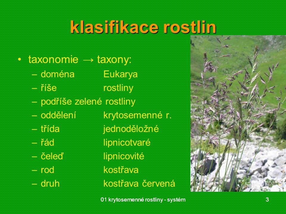 01 krytosemenné rostliny - systém3 3 klasifikace rostlin taxonomie → taxony: –doménaEukarya –říšerostliny –podříšezelené rostliny –odděleníkrytosemenné r.