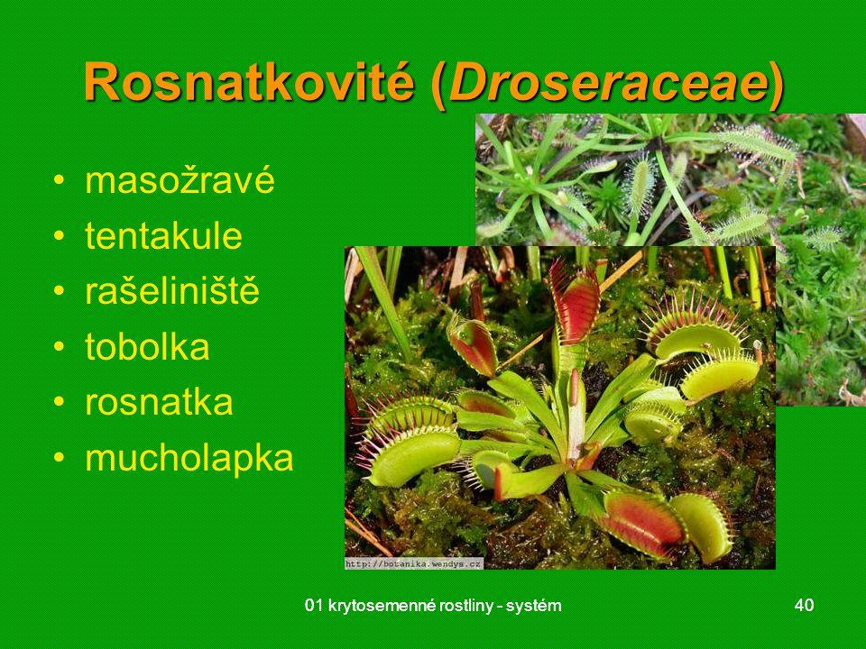 01 krytosemenné rostliny - systém4001 krytosemenné rostliny - systém40 Rosnatkovité (Droseraceae) masožravé tentakule rašeliniště tobolka rosnatka mucholapka