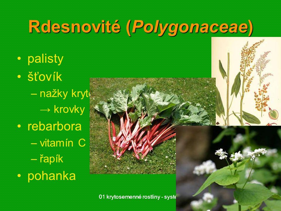 01 krytosemenné rostliny - systém4101 krytosemenné rostliny - systém41 Rdesnovité (Polygonaceae) palisty šťovík –nažky kryté okvětím → krovky rebarbor