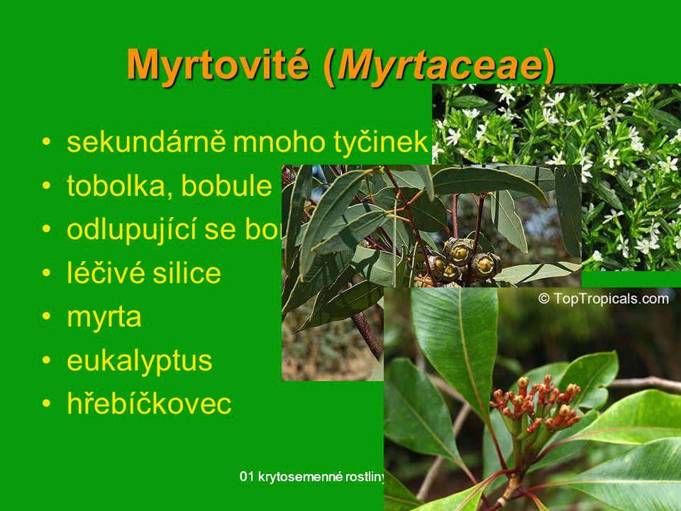01 krytosemenné rostliny - systém4801 krytosemenné rostliny - systém48 Myrtovité (Myrtaceae) sekundárně mnoho tyčinek tobolka, bobule odlupující se borka léčivé silice myrta eukalyptus hřebíčkovec