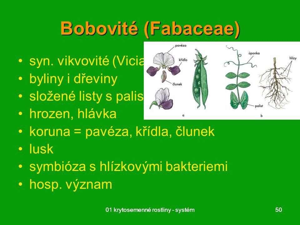 01 krytosemenné rostliny - systém5001 krytosemenné rostliny - systém50 Bobovité (Fabaceae) syn. vikvovité (Viciaceae) byliny i dřeviny složené listy s