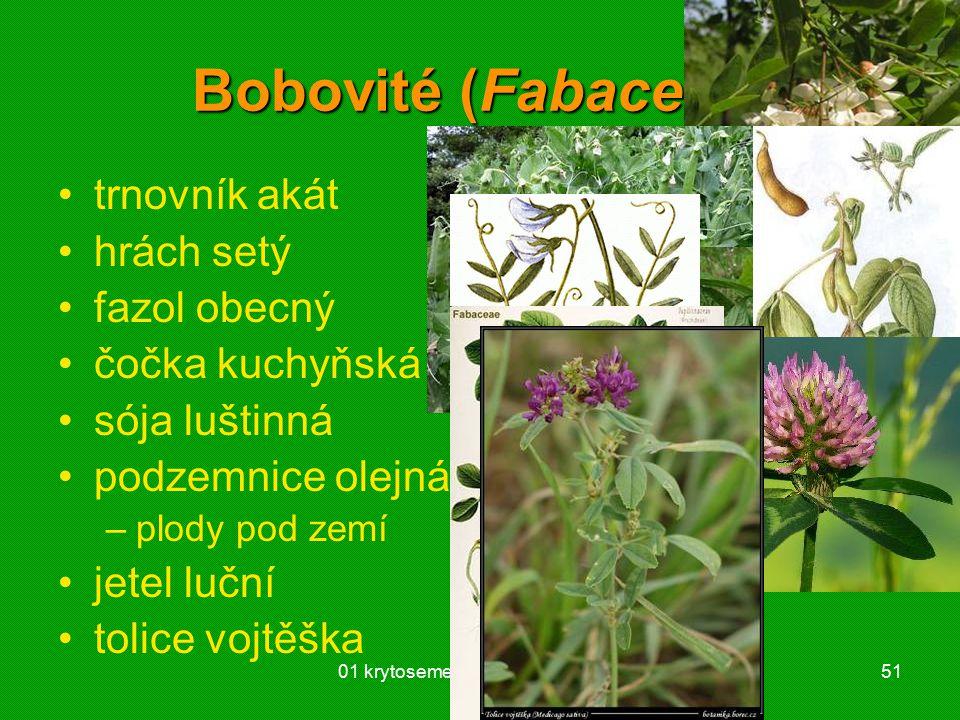 01 krytosemenné rostliny - systém51 Bobovité (Fabaceae) trnovník akát hrách setý fazol obecný čočka kuchyňská sója luštinná podzemnice olejná –plody p