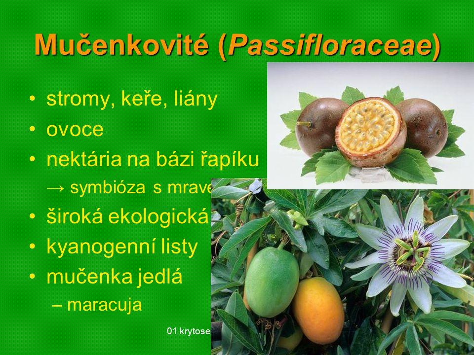 01 krytosemenné rostliny - systém57 Mučenkovité (Passifloraceae) stromy, keře, liány ovoce nektária na bázi řapíku → symbióza s mravenci široká ekologická amplituda kyanogenní listy mučenka jedlá –maracuja