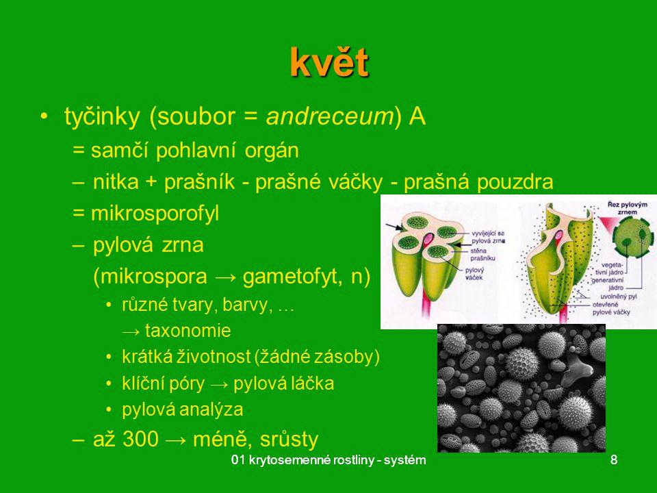 01 krytosemenné rostliny - systém8 8 květ tyčinky (soubor = andreceum) A = samčí pohlavní orgán –nitka + prašník - prašné váčky - prašná pouzdra = mikrosporofyl –pylová zrna (mikrospora → gametofyt, n) různé tvary, barvy, … → taxonomie krátká životnost (žádné zásoby) klíční póry → pylová láčka pylová analýza –až 300 → méně, srůsty