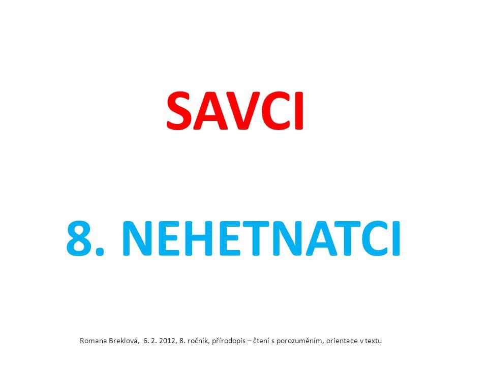 SAVCI 8. NEHETNATCI Romana Breklová, 6. 2. 2012, 8.