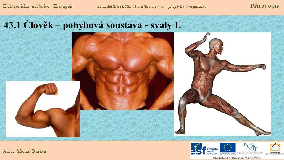 43.1 Člověk – pohybová soustava - svaly I.Elektronická učebnice - II.